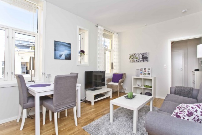 1-bedroom apartment (Max 3 persons)