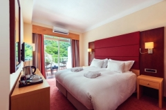 Executive Double Room - Accessible