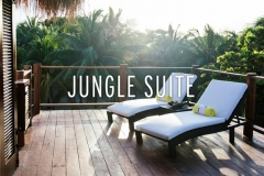 Jungle Suite