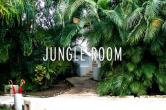 Jungle Room Double