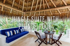 Jungle Suite Plunge Pool King