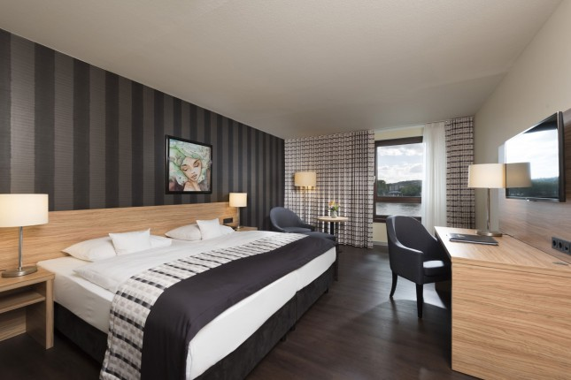 Superior Double Room with Rhine view